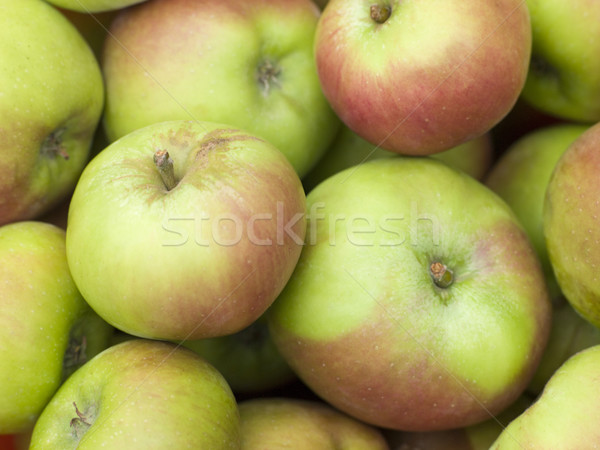 Apples, Cox Stock photo © monkey_business