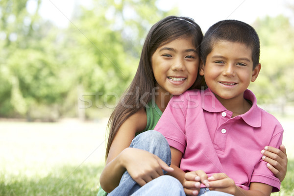 Portrait Of Brother And Sister In Park Stock photo © monkey_business