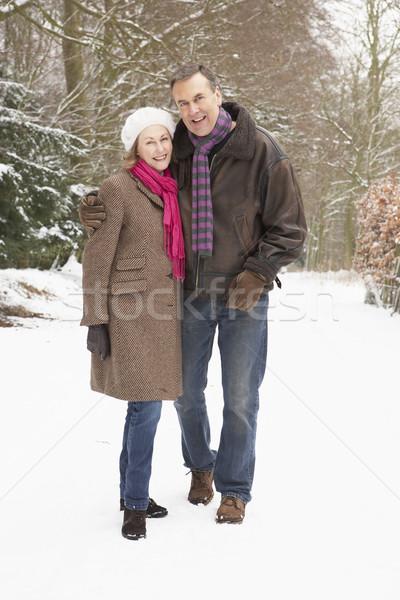 Senior Couple Walking Through Snowy Woodland Stock photo © monkey_business