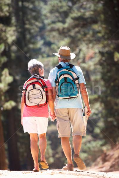 ストックフォト: 国 · 徒歩 · 男 · 森林 · 太陽