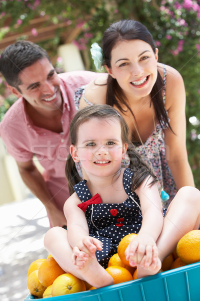 Parents Pushing Daughter In Wheelbarrow Filled With Oranges Stock photo © monkey_business
