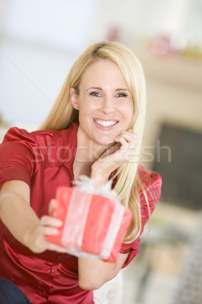 Woman Handing Out Christmas Present Stock photo © monkey_business
