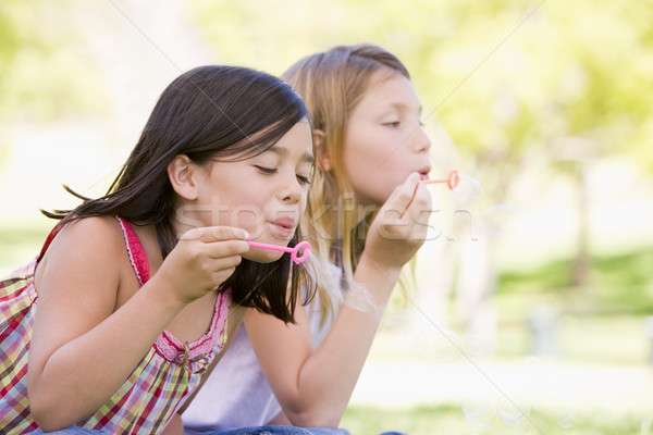 Two young girls blowing bubbles outdoors Stock photo © monkey_business