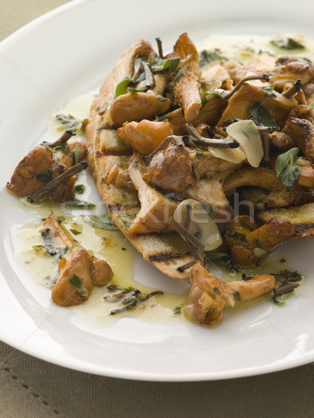 Wild Mushrooms Sauteed in Garlic Butter with Char grilled Baguet Stock photo © monkey_business
