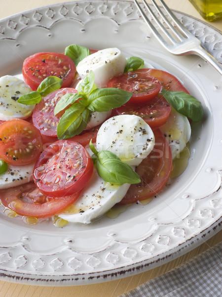 Tomato Mozzarella Cheese and Basil Salad Stock photo © monkey_business