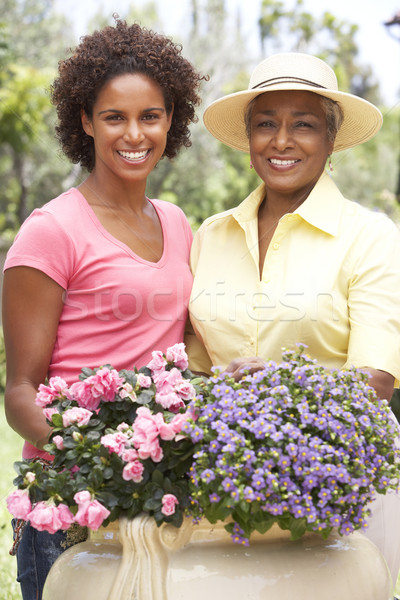 Stock photo: Senior Woman With Adult Daughter Gardening Together