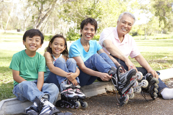 Foto stock: Avós · netos · linha · patins · parque · família