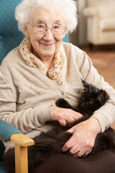 Senior Woman Relaxing In Chair At Home With Pet Cat Stock photo © monkey_business