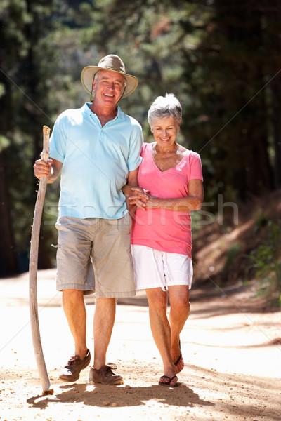 Idős pár vidék séta férfi erdő egészség Stock fotó © monkey_business