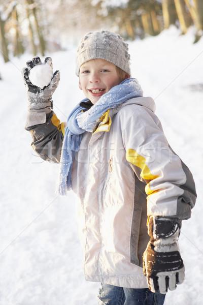 Stockfoto: Jongen · sneeuwbal · boom · kind · sneeuw · winter