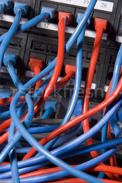 Computer Cables Chaotically Plugged In To The Back Of A Server Stock photo © monkey_business