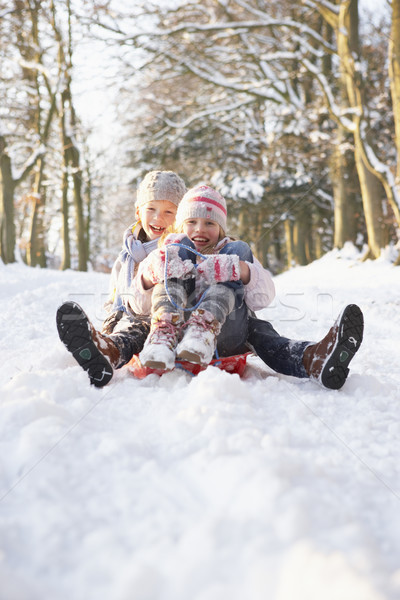 Boy And Girl Sledging Through Snowy Woodland Stock photo © monkey_business
