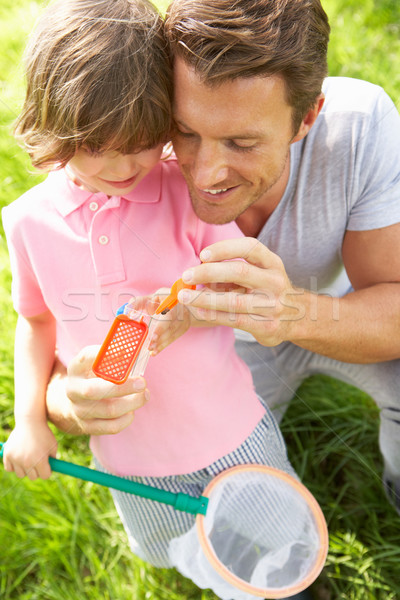 Father And Son In Field With Net And Bug Catcher Stock photo © monkey_business