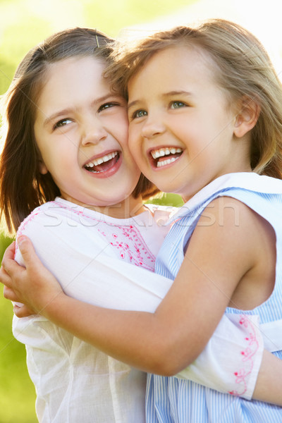 Two Young Girls Giving One Another Hug In Summer Field Stock photo © monkey_business