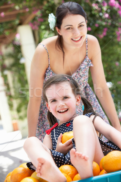Mother Pushing Daughter In Wheelbarrow Filled With Oranges Stock photo © monkey_business