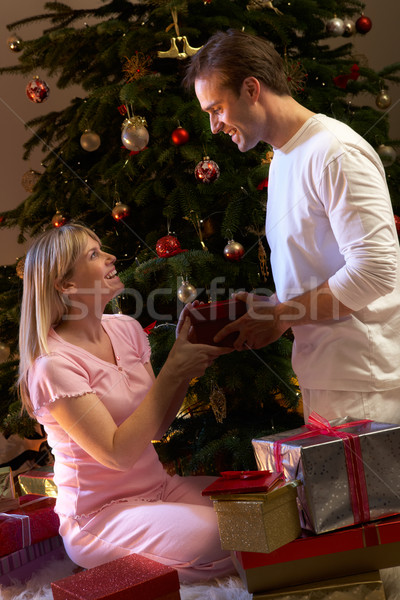 Couple Exchanging Presents In Front Of Tree Stock photo © monkey_business