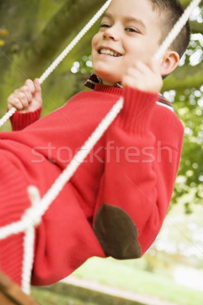 Young boy having fun on swing Stock photo © monkey_business
