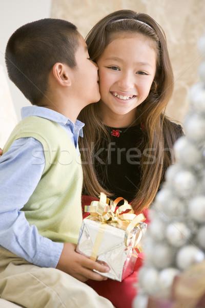 Foto stock: Irmão · beijando · irmã · natal · menina