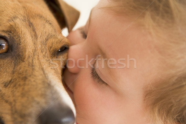 Baby kissing dog Stock photo © monkey_business