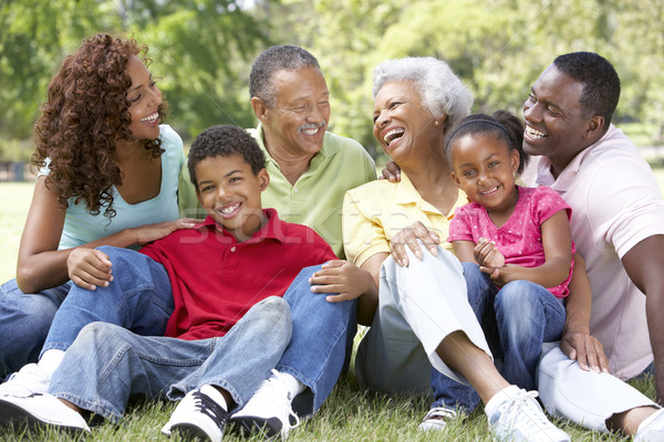 Portret uitgebreide familie groep park kind tuin Stockfoto © monkey_business