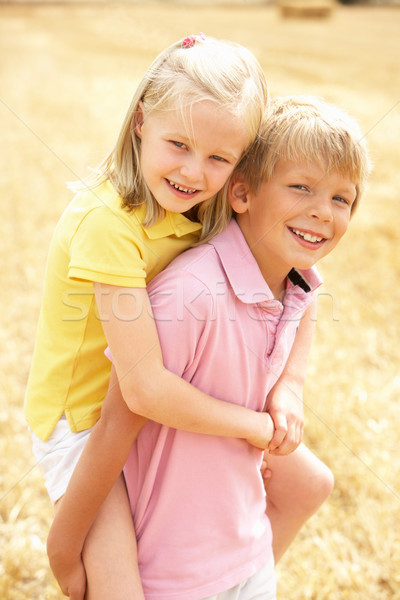 Portrait Of Boy And Girl In Summer Harvested Field Stock photo © monkey_business