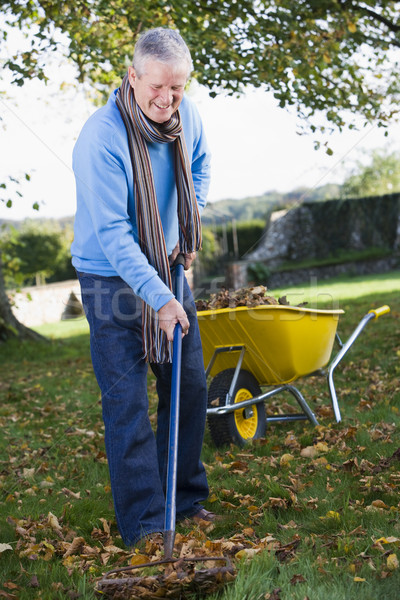 Senior man collecting leaves in garden Stock photo © monkey_business