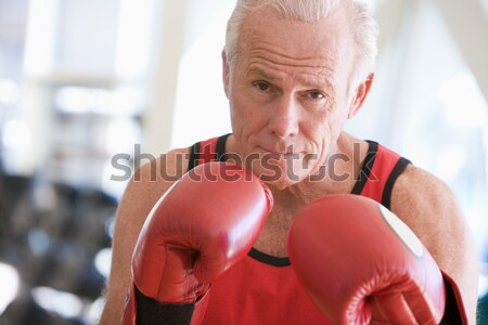 Man Boxing At Gym Stock photo © monkey_business