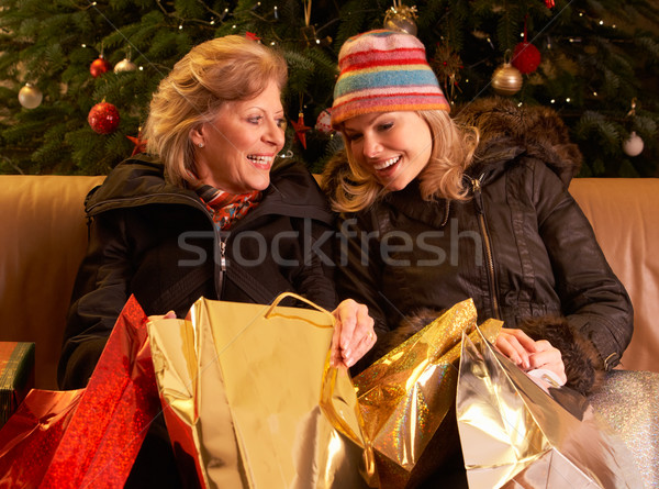 Two Women Returning After Christmas Shopping Trip Stock photo © monkey_business