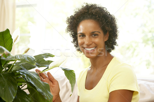 Woman Looking After Houseplant Stock photo © monkey_business
