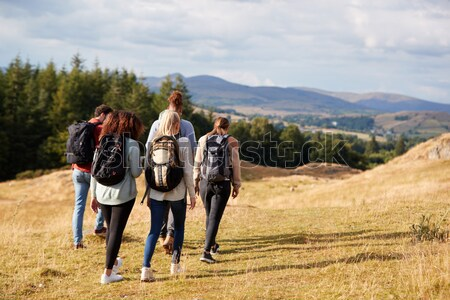 Young men on country walk Stock photo © monkey_business