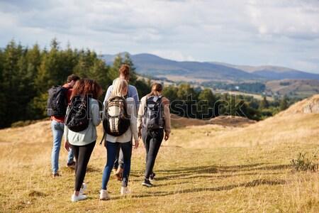 Genç erkekler ülke yürümek güneş erkekler mavi gökyüzü Stok fotoğraf © monkey_business
