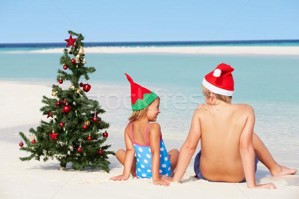 Fiú lány ül tengerpart karácsonyfa kalap Stock fotó © monkey_business