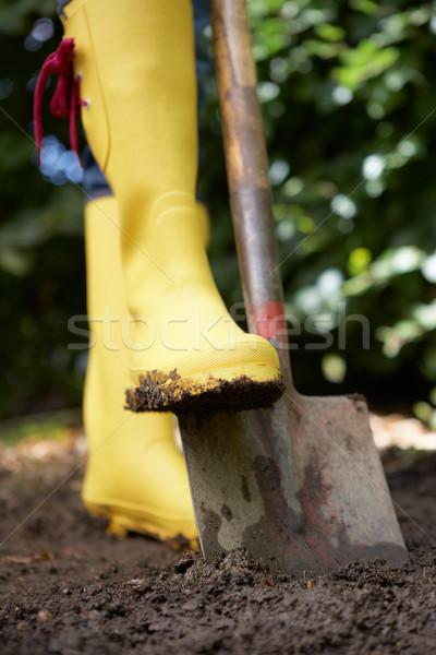 Femme jardin travail personne mode de vie sol Photo stock © monkey_business