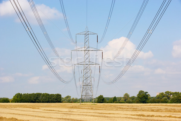 Electricity pylons in countryside Stock photo © monkey_business