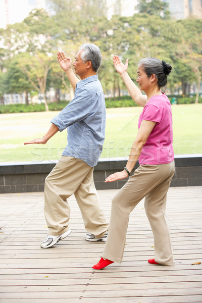 Senior chinese paar tai chi park vrouw Stockfoto © monkey_business