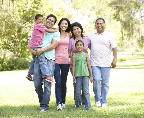 Foto stock: Família · grande · grupo · caminhada · parque · criança · jardim