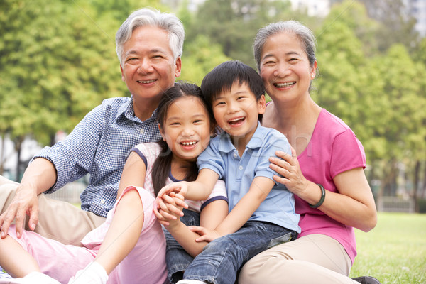 Chinese Grandparents Sitting With Grandchildren In Park Stock photo © monkey_business