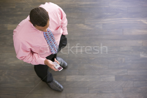 Businessman standing indoors looking at cellular phone Stock photo © monkey_business