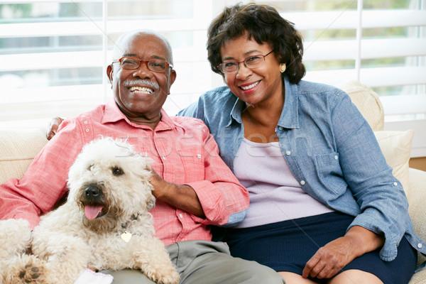 Stockfoto: Gelukkig · vergadering · sofa · hond · vrouw