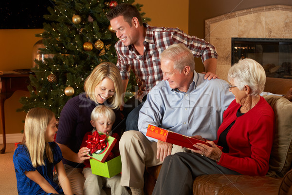 Többgenerációs család nyitás karácsony ajándékok fa nő Stock fotó © monkey_business