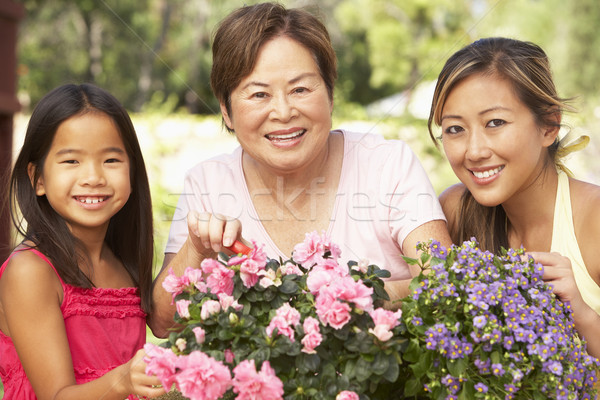 Granddaughter With Grandmother And Mother Gardening Together Stock photo © monkey_business