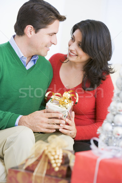 Husband Surprising Wife With Christmas Present Stock photo © monkey_business