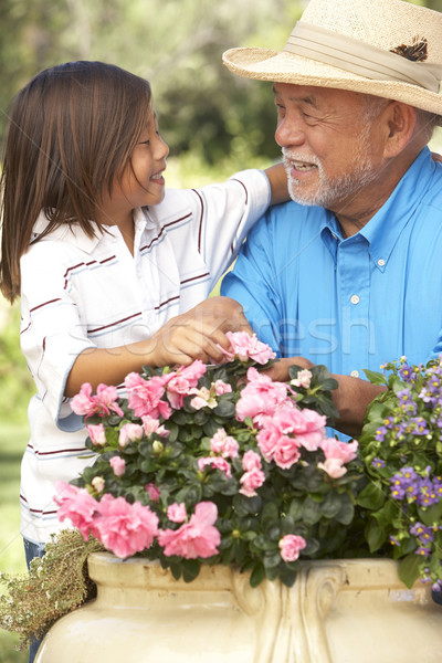 Grandfather And Grandson Gardening Together Stock photo © monkey_business