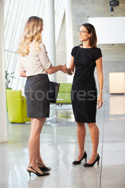 Two Businesswomen Shaking Hands In Modern Office Stock photo © monkey_business