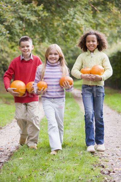 Foto d'archivio: Tre · giovani · amici · zucche · sorridere