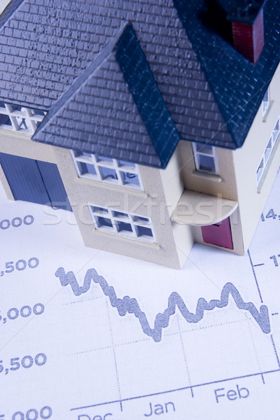 Concept Showing Decline In Housing Market Stock photo © monkey_business