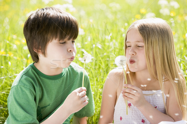 Two young children sitting outdoors blowing dandelion heads smil Stock photo © monkey_business