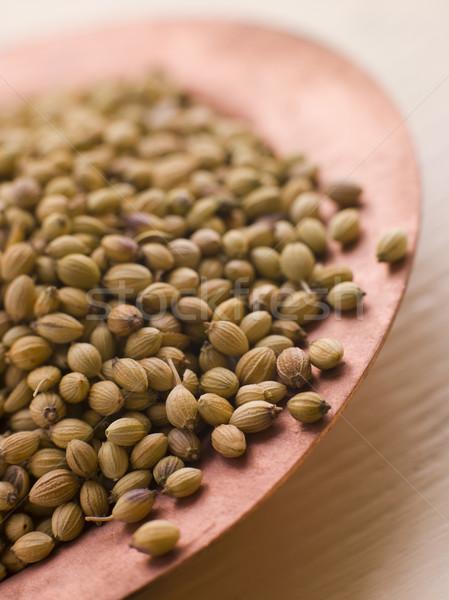 Yemek kişniş tohumları iç otlar Stok fotoğraf © monkey_business