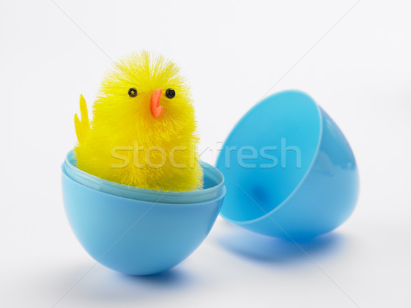 Stock photo: Easter Chick Hatching Out Of Egg