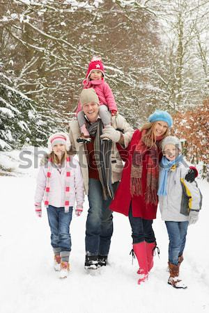 Group Of Children Having Fun In Snowy Countryside Stock photo © monkey_business